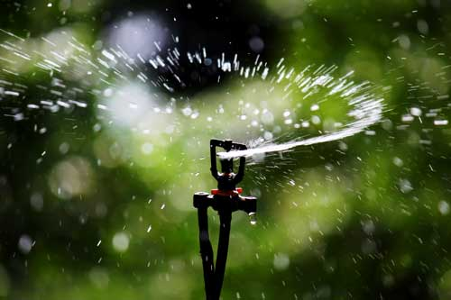 Sprinkler_Irrigation