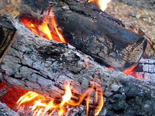 pinion wood smoke is claimed to repel mosquitoes