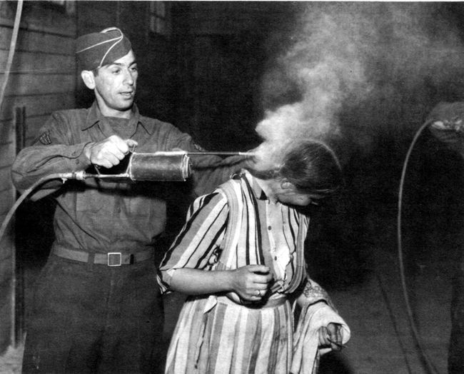 delousing people by spraying their heads with DDT was an effective treatment